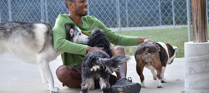 Smith Farms Dog Training Philosophy